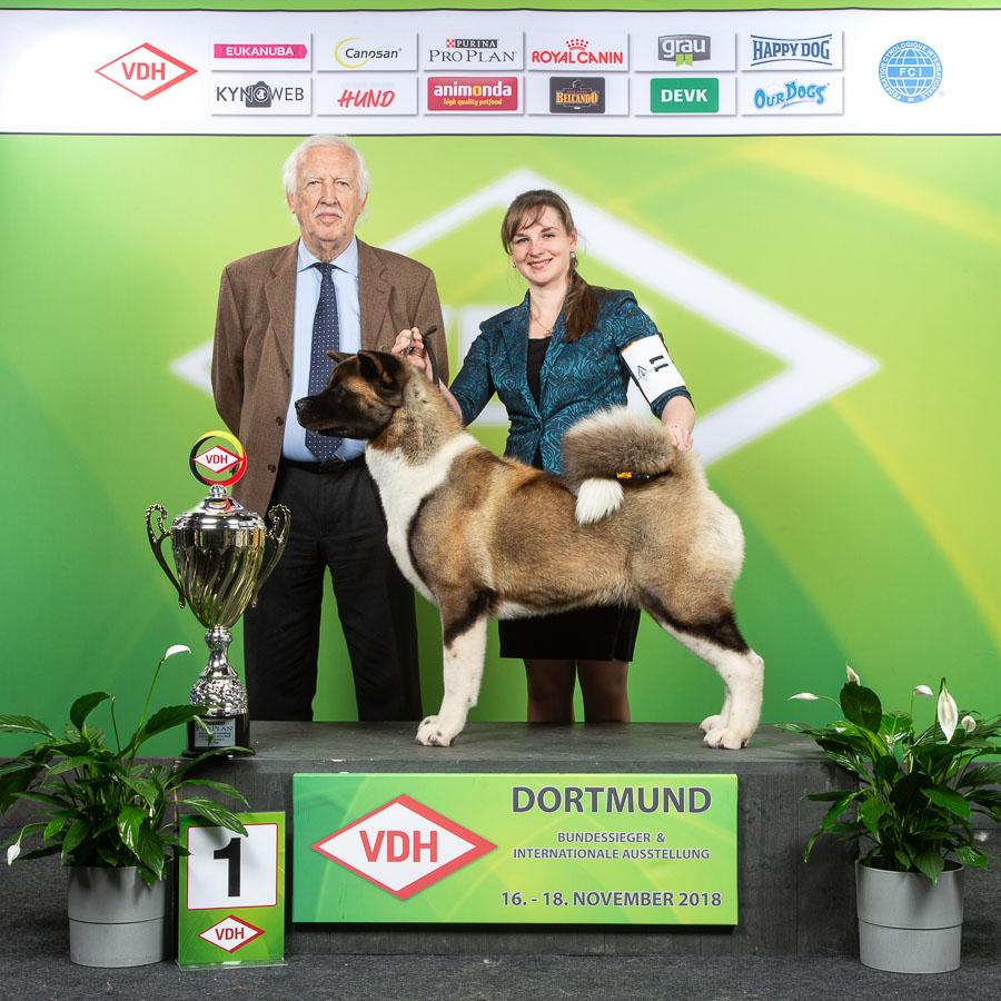 Hund Und Pferd 2018: Internationale Ausstellung » VDH.de