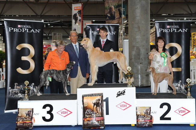 german winner show 2014 187 vdhde