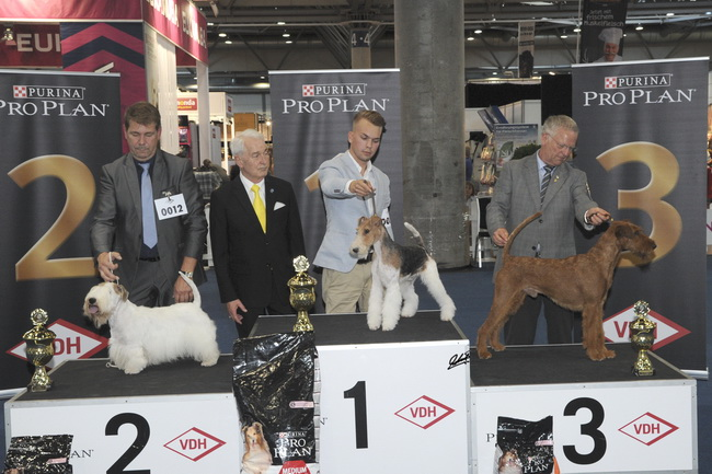 FCI group III - BIS «Germany Winner» Leipzig (Germany), Saturday, 20-21 August 2016