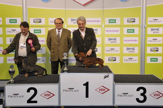 FCI group IV - Winners of the International dog show «Federal Winner 2015» Dortmund, 16 - 18 October 2015 (BIS photo)