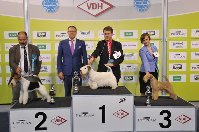 FCI group III - Winners of the International Dog Show Dortmund (Germany), 16 - 18 October 2015 (BIS photo)