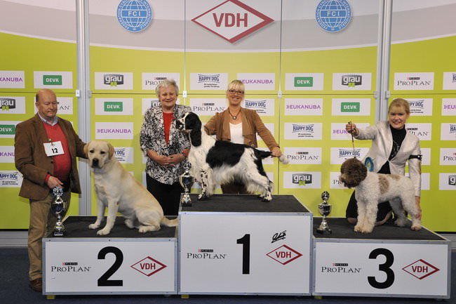 FCI group VIII - Winners of the International Dog Show Dortmund (Germany), 16 - 18 October 2015 (BIS photo)