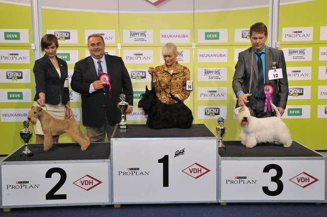 FCI group III - Winners of the International dog show «Federal Winner 2015» Dortmund, 16 - 18 October 2015 (BIS photo)