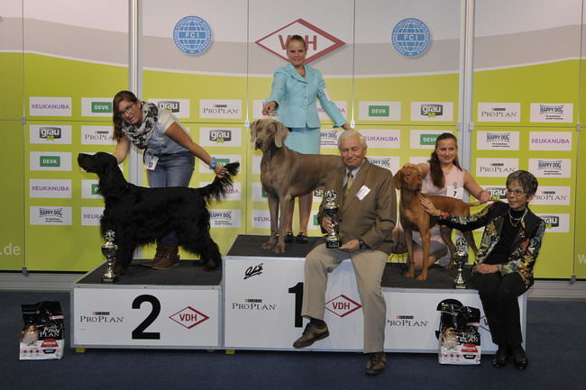 FCI group VII - Winners of the International dog show «Federal Winner 2015» Dortmund, 16 - 18 October 2015 (BIS photo)