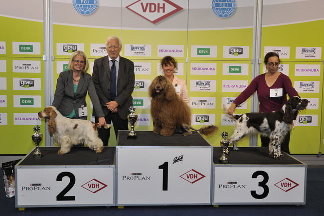 FCI group VIII - Winners of the International dog show «Federal Winner 2015» Dortmund, 16 - 18 October 2015 (BIS photo)