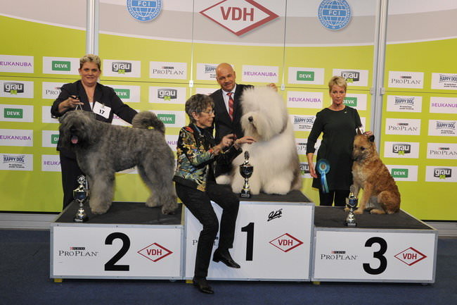 FCI group I - Winners of the International Dog Show Dortmund (Germany), 16 - 18 October 2015 (BIS photo)