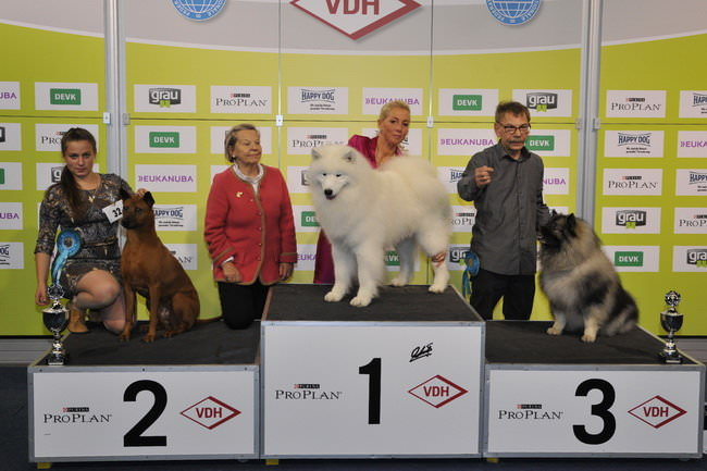 FCI group V - Winners of the International Dog Show Dortmund (Germany), 16 - 18 October 2015 (BIS photo)